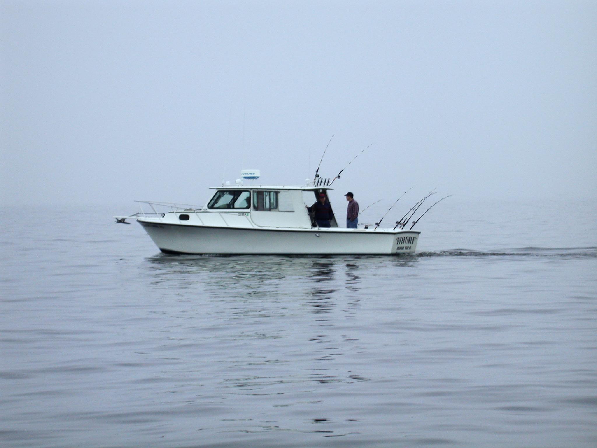 Home chesapeake bay charter boat captains for Chesapeake bay fishing